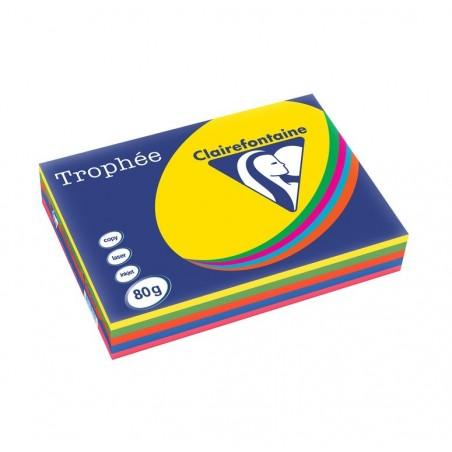 TROPHÉE Ramette 500 Feuilles Papier 80g A3 420x297 mm Certifié FSC  Assorti Intense