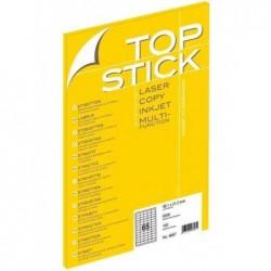 TOP STICK Bte 100...