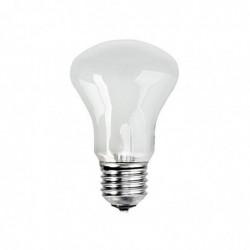 ELINCHROM ampoule 196V/100W E 27
