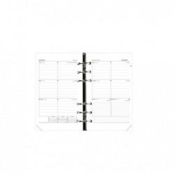 QUO VADIS Recharge Agenda Organiseur Timer 21 HORIZONTAL FR 15 x 21 cm