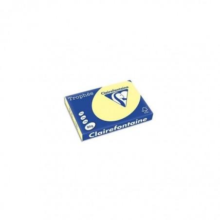 TROPHÉE Ramette 500 Feuilles Papier 80g A3 420x297 mm Certifié FSC  CANARI
