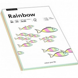 PAPYRUS Rainbow A4 80g Pastell Mix 5x 20 feuilles