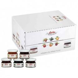 DARBO Carton de 60 Mini Pots en Verre 28g Confiture Exquise 5 Parfum Assortis