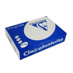 TROPHÉE Ramette 250 Feuilles Papier 210g A4 210x297 mm Certifié FSC  gris acier