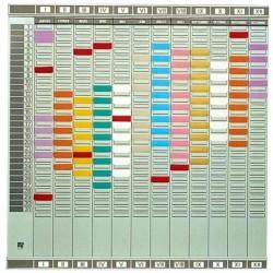 NOBO Planning Professional à fiches T 12 colonne 32 fentes
