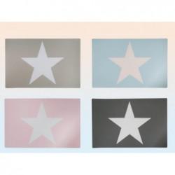 set de table 45*30 cm 4 couleurs- 145068