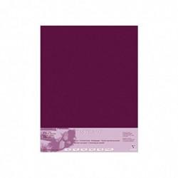 CLAIREFONTAINE Paquet 5 Feuilles Pastelmat 70x100 cm 360g Lie de vin