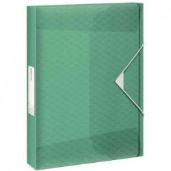 ESSELTE Boîte de classement Colour'Ice, A4, pp, vert