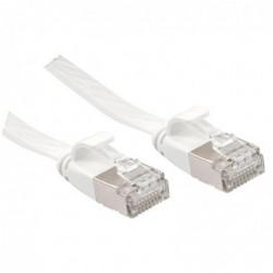 LINDY Câble réseau plat...