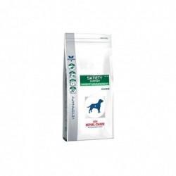 ROYAL CANIN Croquettes VD pour Chien avec Problème de Surpoids Satiety Support 12 kg