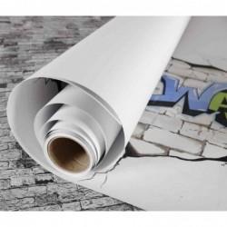 """CANSON Rouleau papier à dessin """"The WALL"""", 1 x 5 m, 220 g/m2"""