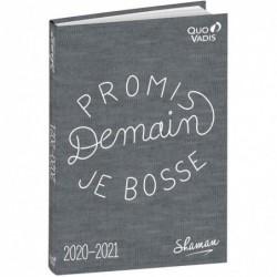 "QUO VADIS Textagenda SHAMAN ""demain je bosse"", 2020/2021"