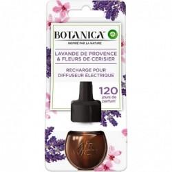 AIR WICK Recharge Electrique Lavande de Provence/Fleurs de Cerisier 19 ml