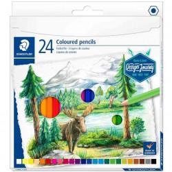 STAEDTLER Crayon couleur...